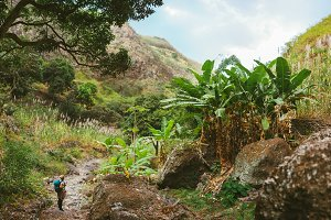 Female hiker take a rest in wondrous lush canyon full of exotic vegetation. Plenty of tropical fruit trees, sugar cane growing up on the mountain slopes on Santo Antao island Cape Verde