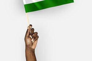 Flag of Republic of India