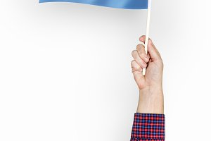 Flag of Argentine Republic