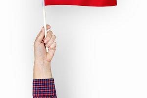 Flag of Republic of Turkey
