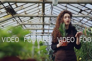 Professional female gardener is recording tutorial about gardening with camera standing inside spacious hothouse and holding pot plant. Farming and people concept.