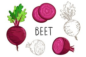 Beet isolated on white background