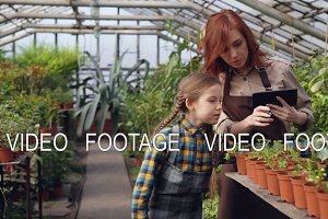 Helpful child is counting pot plants in hothouse while her mother is entering data in tablet and talking to her daughter. Family business and agriculture concept.