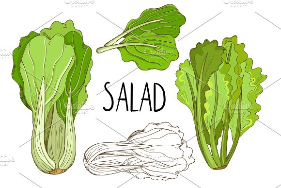 Green Salad Isolated On White Background