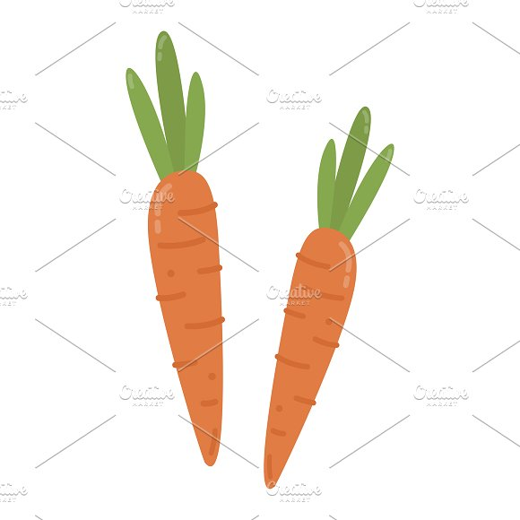 Orange Carrots Graphic Illustration