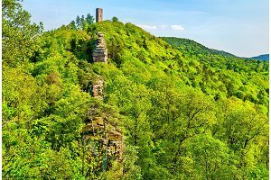 Scharfenberg Castle in the Palatinate Forest. Rhineland-Palatinate, Germany