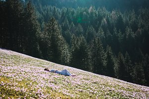 Girl lies in the flower field