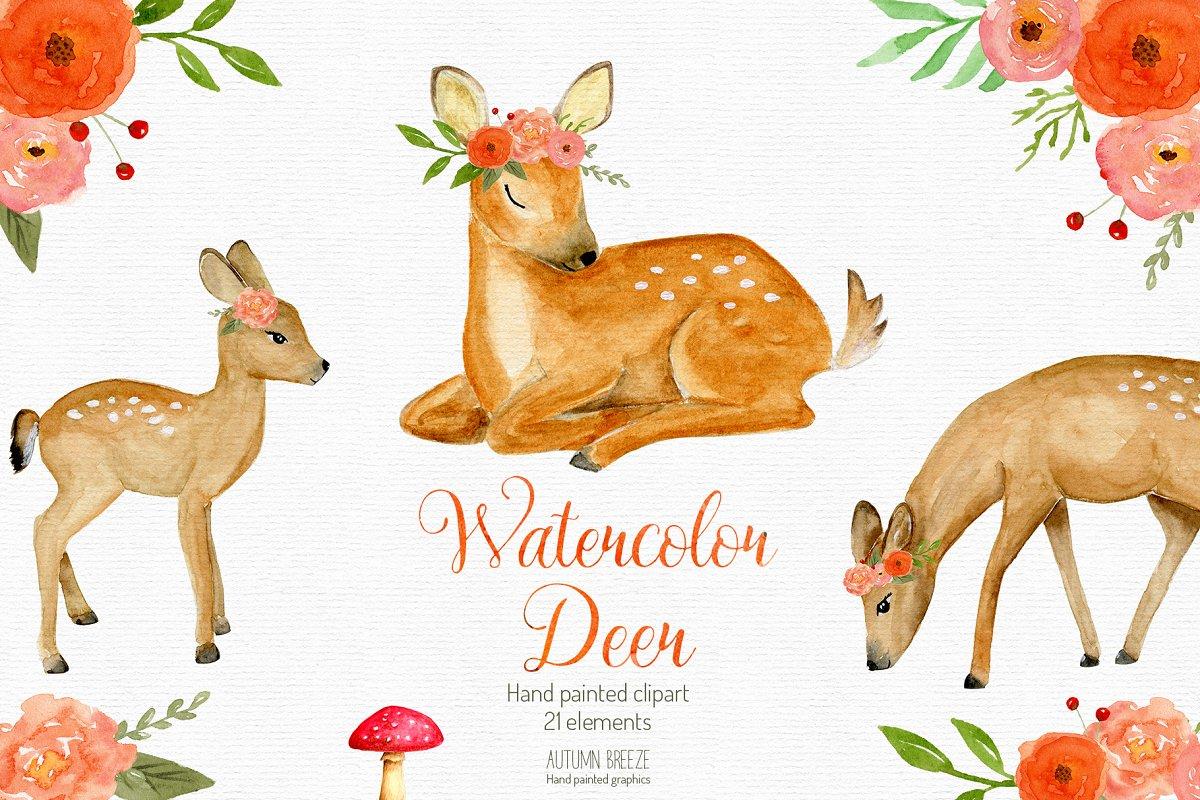 Deer watercolor. Baby clipart
