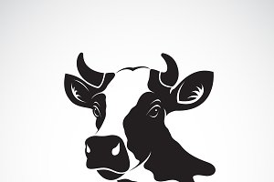 Vector of cow head design. Animal.