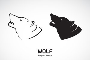 Vector of wolf head design. Animal.