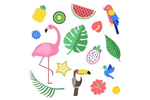 Flowers and tropical exotic fruits and birds. Vector illustrations isolate
