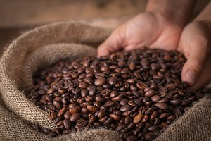 Hands on a sack of coffee beans