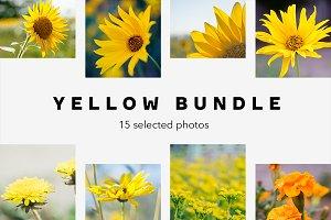 Yellow Bundle