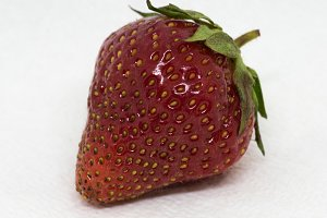 Organic Fresh Strawberry