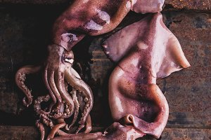 Seafood squid calamary. Fresh raw whole squid with tentacles on rustik background. Top view