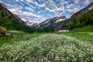 Meadows in the mountains