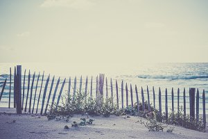 Wooden fence on Atlantic beach in