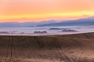 Morning fog view on farmland in