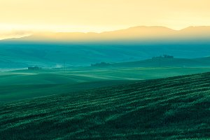 Morning fog view on farmland in