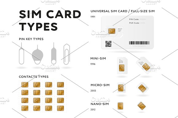SIM Card Types Infographics In Flat Style