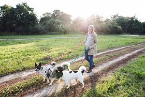 Beautiful pregnant woman with dogs in green sunny nature