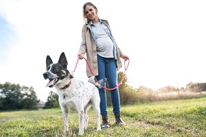 Beautiful pregnant woman with dog in green sunny nature