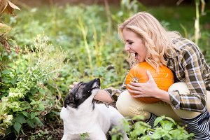 Young blond woman with dog harvesting pumpkins, autumn garden.
