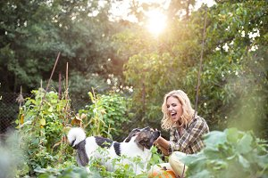Beautiful blond woman with dogs in green garden
