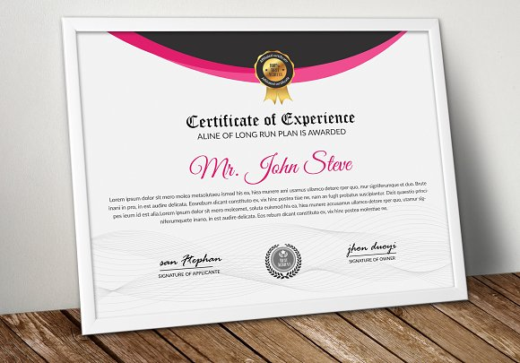 Professional Certificate Word Design