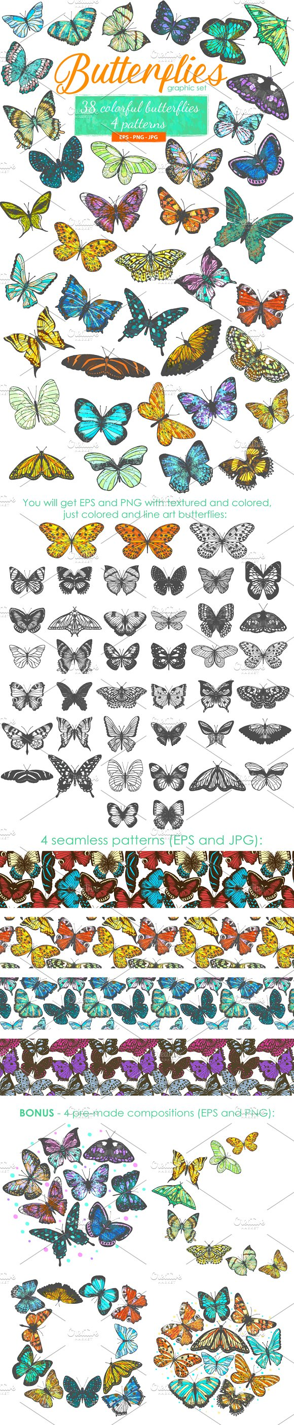 Butterflies Graphic Set