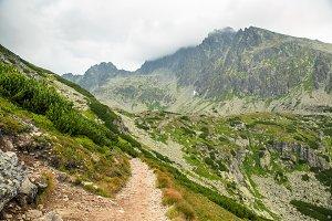 Path to mountains. Foggy, cloudy, rainy day, Tatras, Slovakia