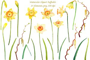 Watercolor Daffodils Spring Flowers