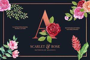 Scarlet & Rose Watercolor Floral Set