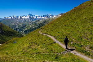 Travelers trekking in the swiss Alps