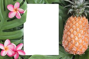 Tropical top view summer botanical concept