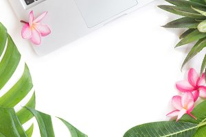 Tropical top botanical concept still life laptop