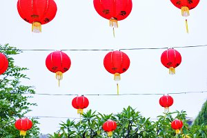 Chinese New Year latterns