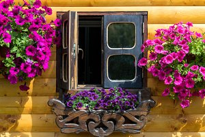 Wooden house windows with flower box