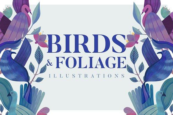 Birds Foliage