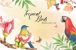 Tropical Birds Watercolor Set