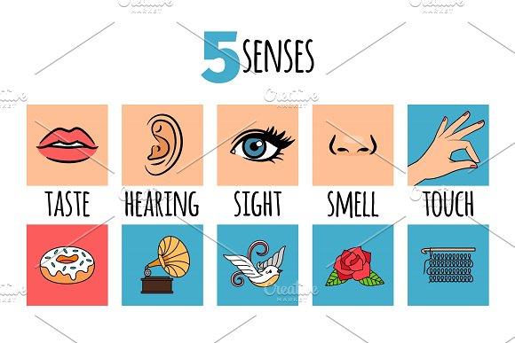 Five Senses Illustrations