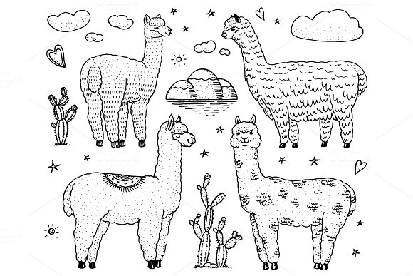 Set Of Cute Alpaca Llamas Or Wild Guanaco On The Background Of Cactus And Mountain Funny Smiling Animals In Peru For Cards Posters Invitations T-shirts Hand Drawn Elements Engraved Sketch