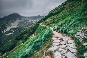 The hiking trail on the green hillside. Tatras.