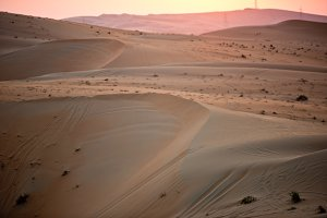 Desert dunes in Liwa, United Arab