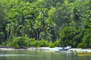 Boats on a Tropical beach