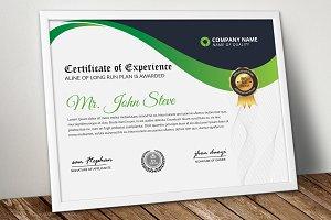 Certificate & Diploma Word Design