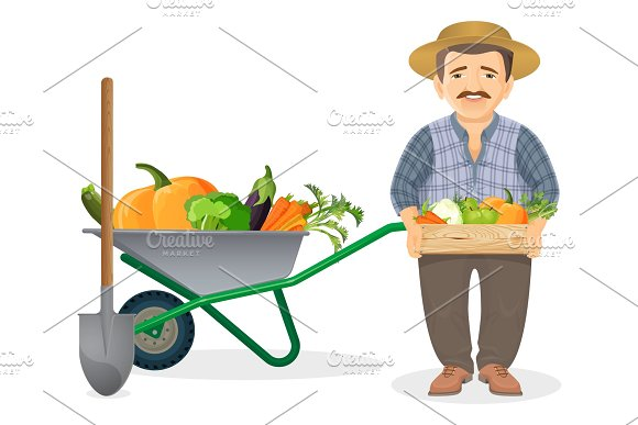 Farmer With Harvest In Metal Cart And Wooden Box