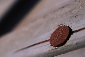 Rusty Nail on Painted Weathered Wood