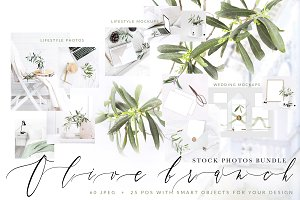 OLIVE BRANCH. 60 PHOTOS + MOCKUPS