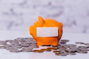 Money piggy bank with empty copy space label ready to insert any text or word and coins